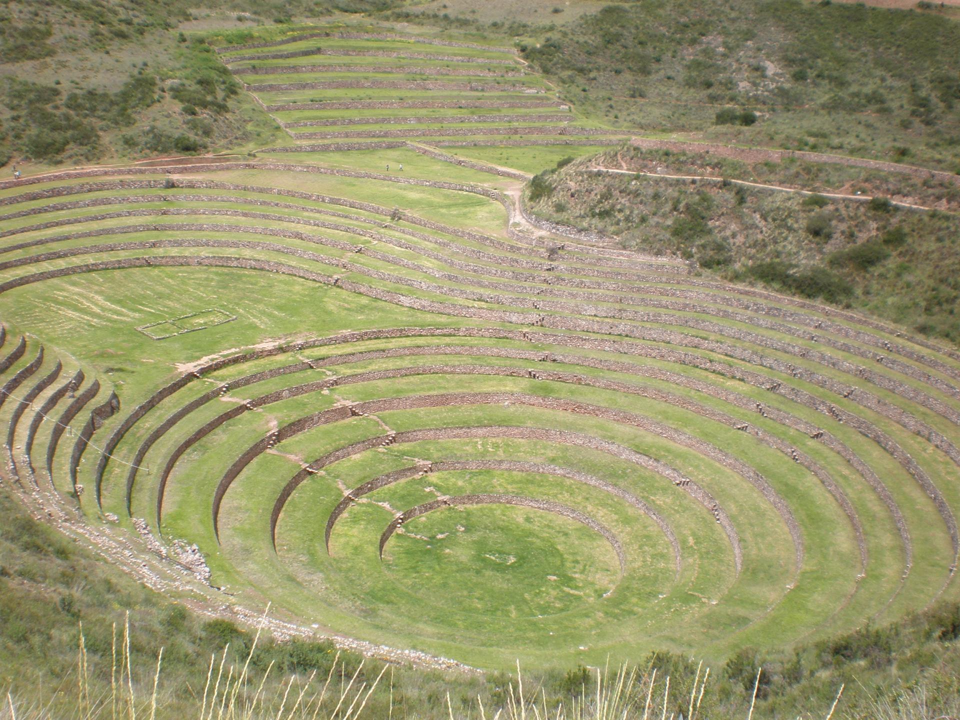 Terrasses agricole de Moray