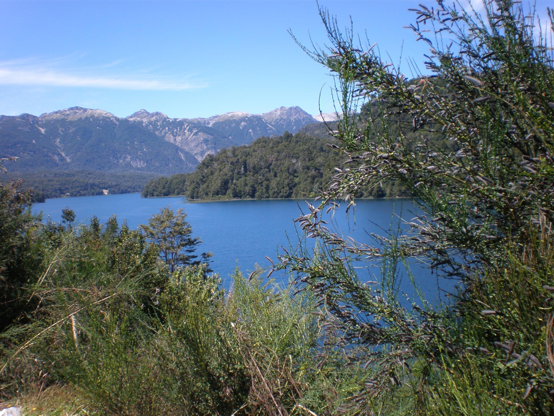 Lago Correntoso - Route des 7 lacs