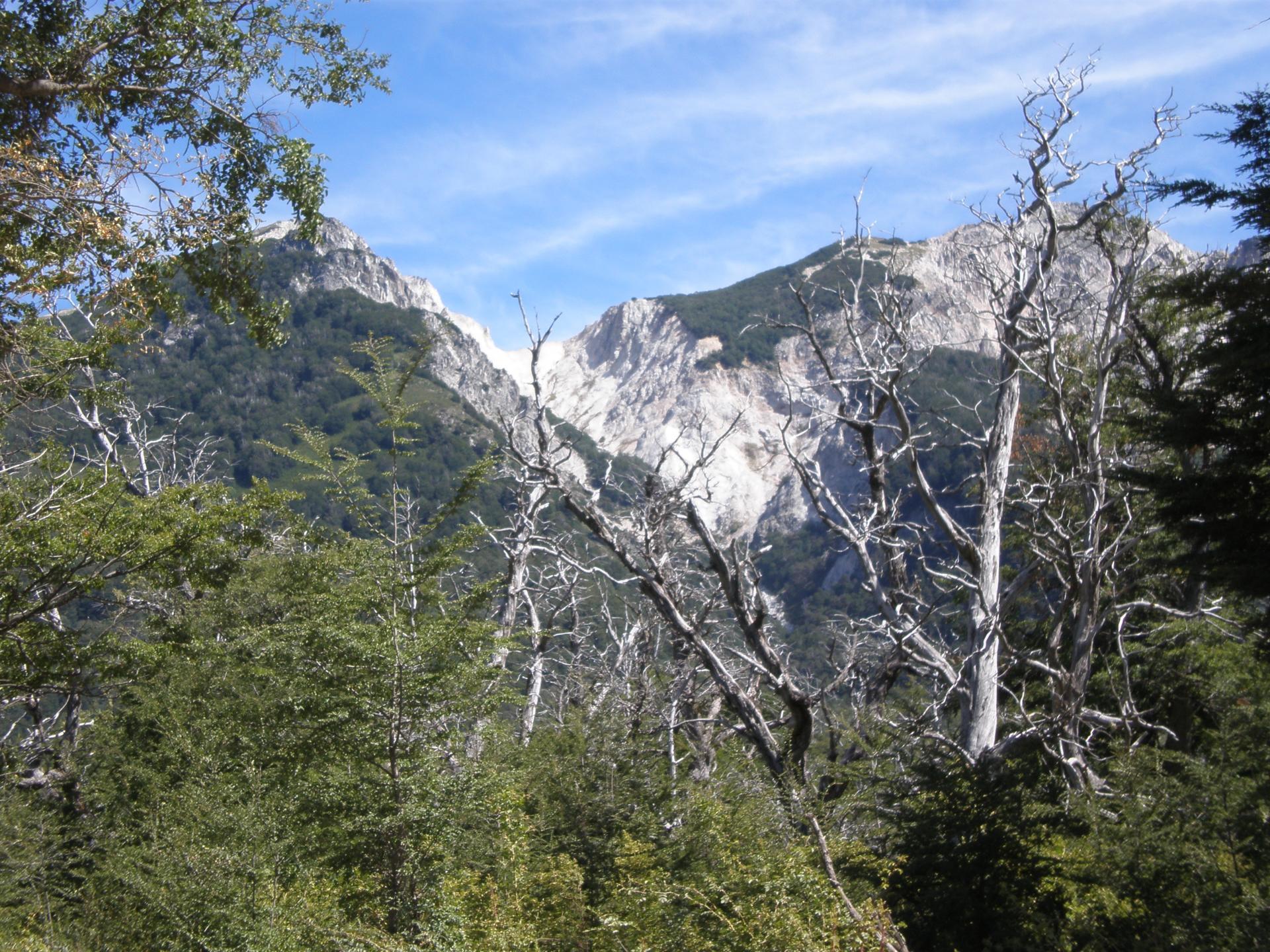 Paysage Route des 7 lacs
